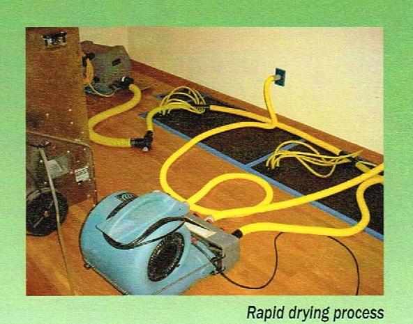 rapid_dry